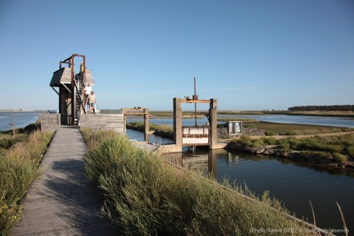observatoire de la Pointe d'Arcay avec accès gratuit