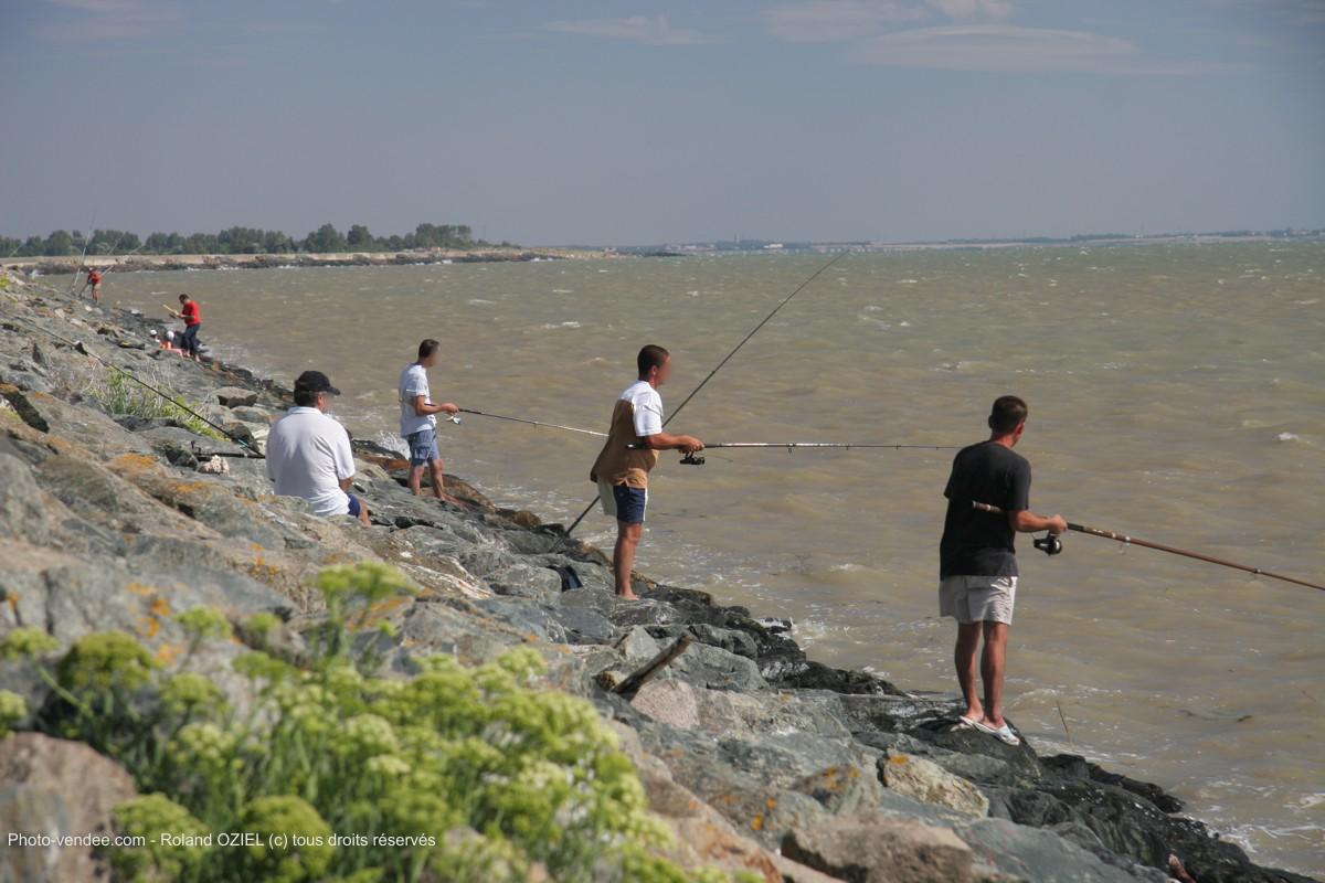 La Faute-sur-Mer : actualits et infos en direct, sorties